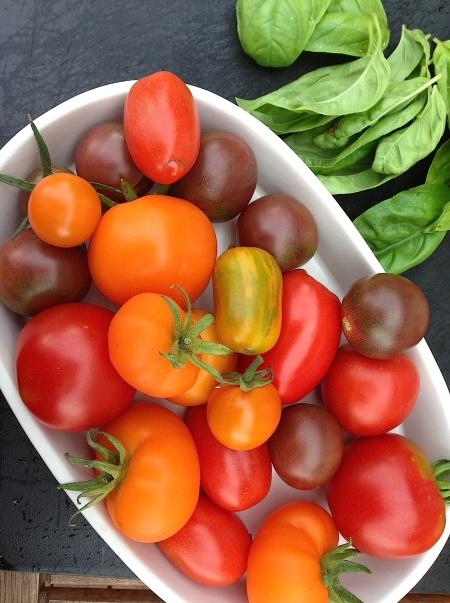 bild-tomat blandat