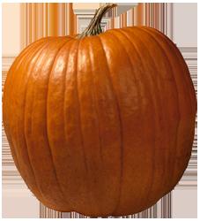 bild_halloweenpumpa