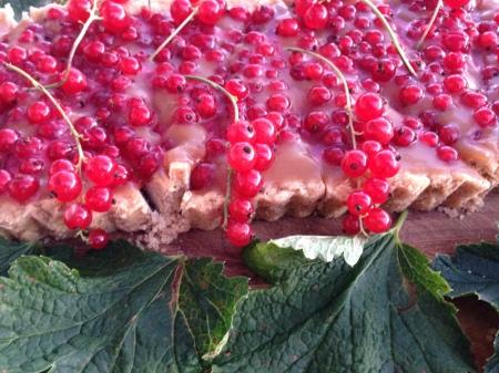kolapaj med rödvinbär