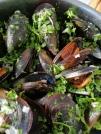 Musselsoppa